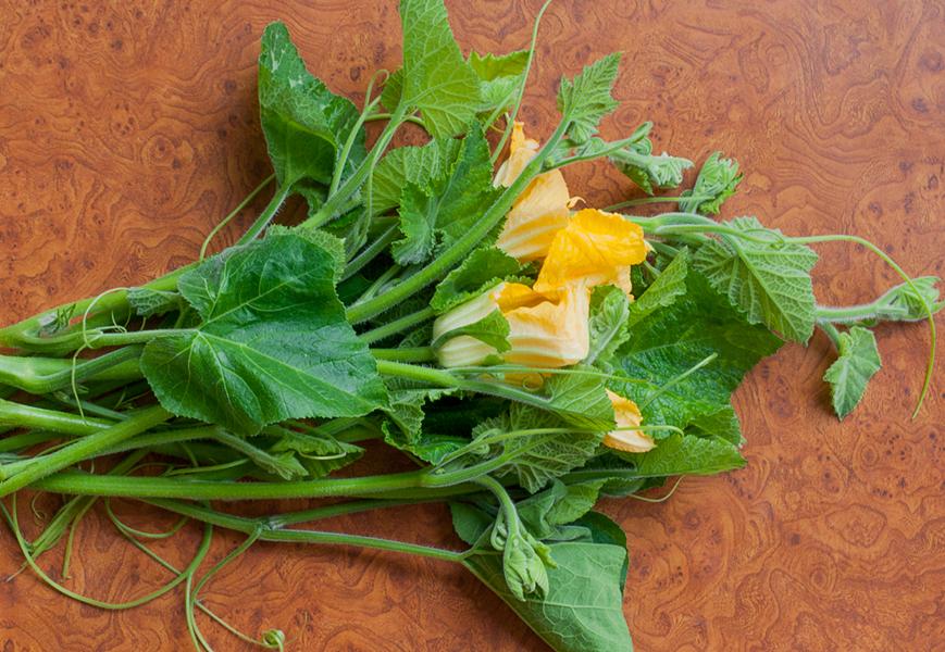pumpking-leaves