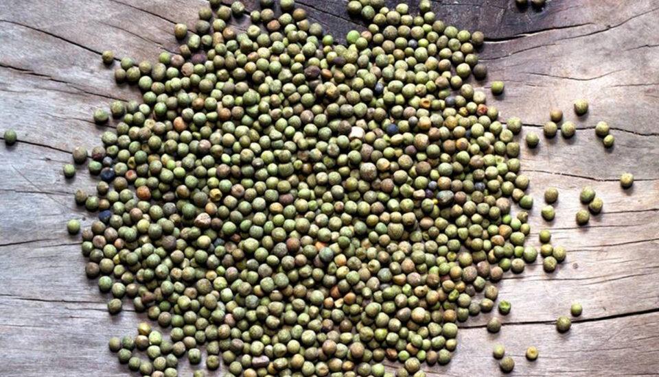Sano kerau, field peas