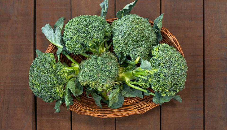Barkauli, brocoli