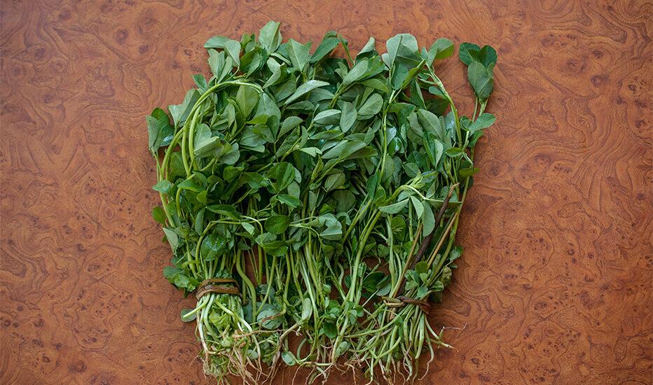 methi saag, fenugreek leaves