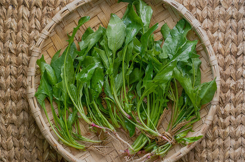 Palungo, spinach