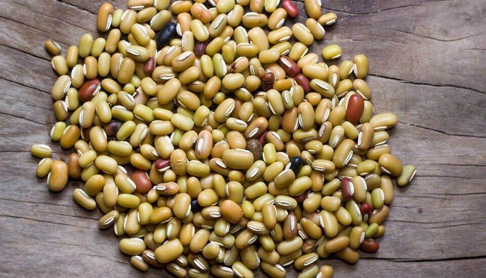 Masyang, rice beans