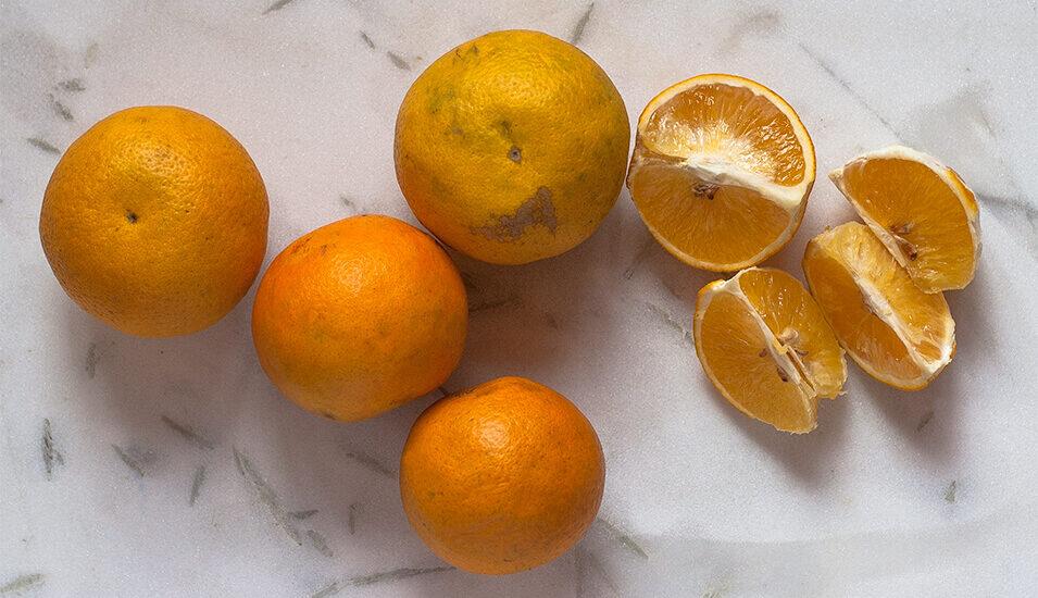 Mausami, orange