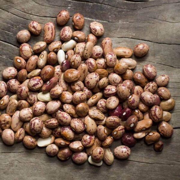 Vui razma, pinto beans