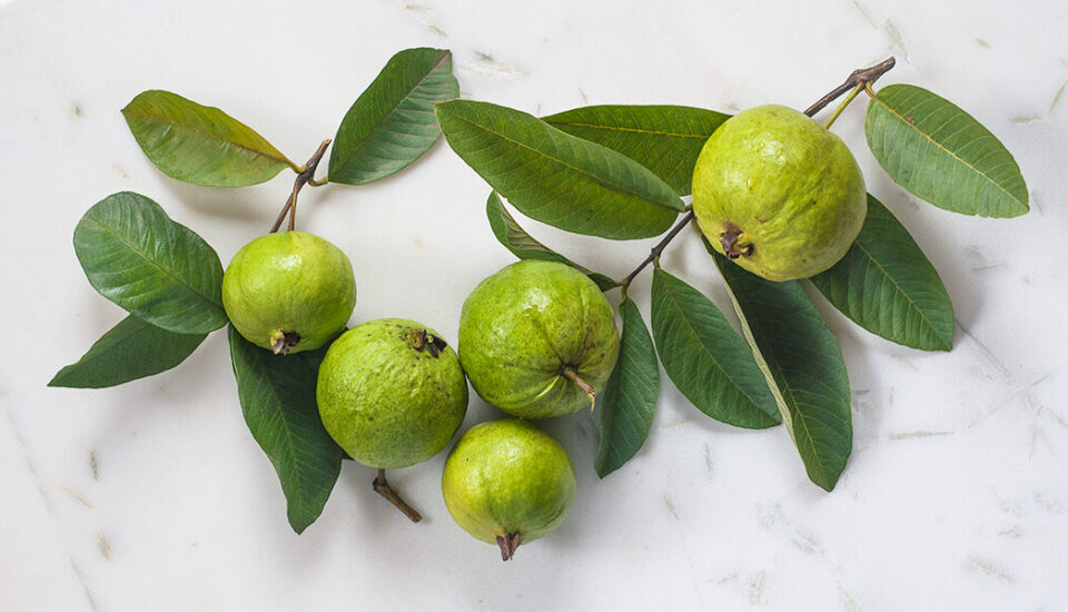 Amba, guava