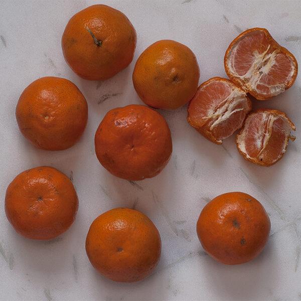 Suntala, tangerine