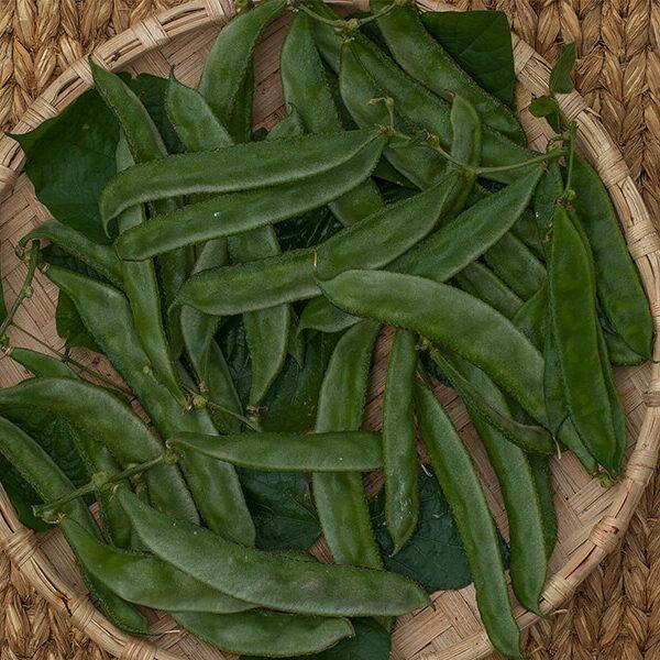 Tatey simi, sword beans