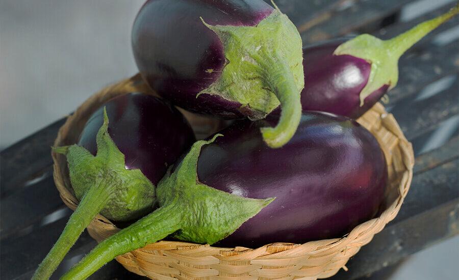 bhanta, baigun, eggplant